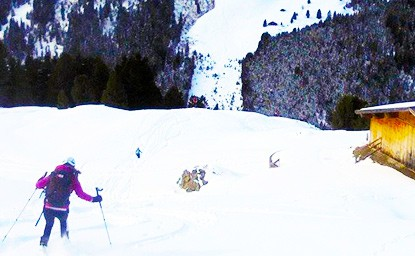 Hoher Kopf (2.373m), Tuxer Alpen, 13.2.2016
