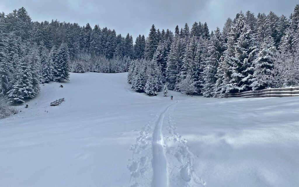 210316-skitour-axamer-koegele-2