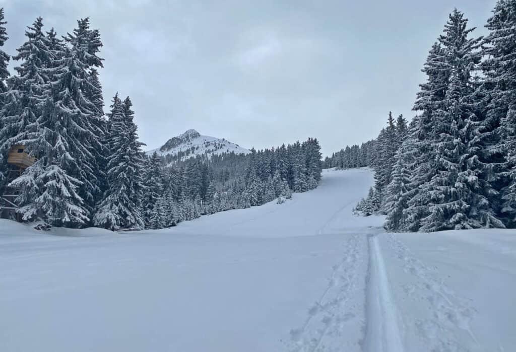 210316-skitour-axamer-koegele-4