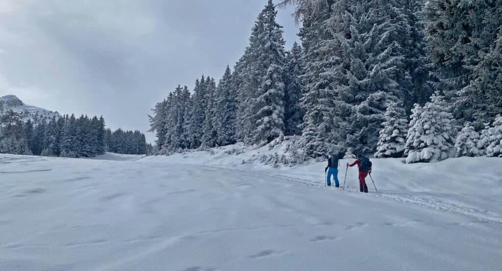 210316-skitour-axamer-koegele-7